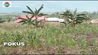 Video Akibat Gempa dan Tsunami, Muncul Kebun Jagung di Kampung Jono Oge Sigi – Fokus Pagi MP3, 3GP, MP4, WEBM, AVI, FLV Oktober 2018