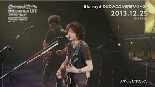 斉藤和義20thAnniversaryLive1993-2013