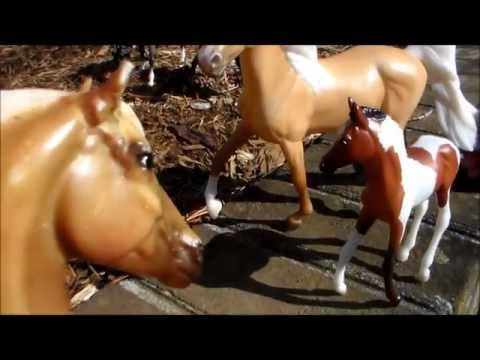 A Herd Of Wild Horses Part 1-Breyer Horse Movie *VERY OLD AND BAD*