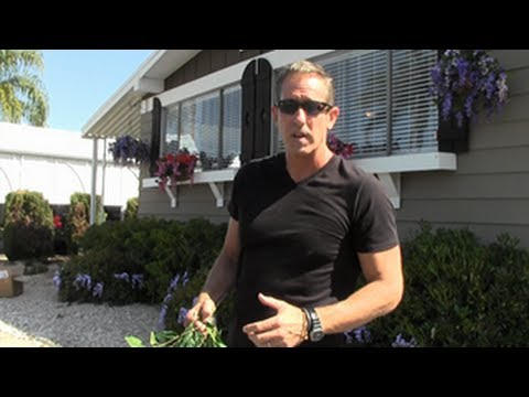 How to Create Curb Appeal Using Silk Flowers | 149 Mobile Home
