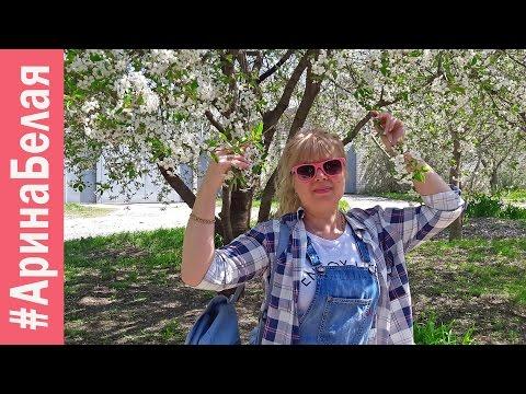 арина белая ютуб новые видео