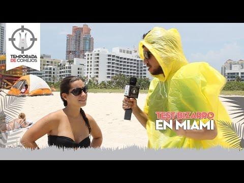 Test Bizarro en Miami #TDConejos