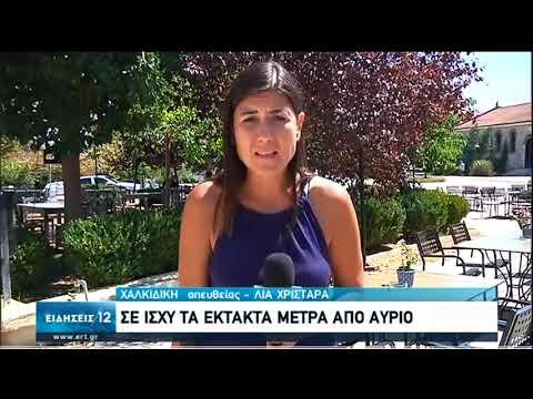 Χαλκιδική – Μύκονος | Έντονες αντιδράσεις απο επιχειρηματίες του τουρισμού για τα μέτρα|20/08/20|ΕΡΤ