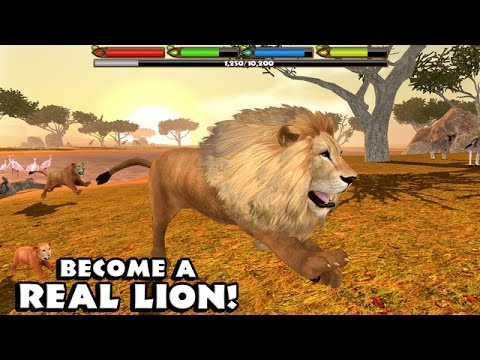 Video 🦁👍ULTIMATE  ♌️LION SIMULATOR - By Gluten Free Games - Compatible with iPhone, iPad, and iPod touch. download in MP3, 3GP, MP4, WEBM, AVI, FLV January 2017