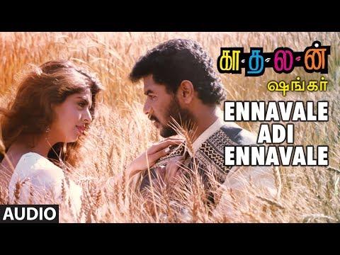 Video Ennavale Adi Ennavale Full Song || Kaadhalan || Prabhu Deva, Nagma, A.R Rahman Tamil Songs download in MP3, 3GP, MP4, WEBM, AVI, FLV January 2017