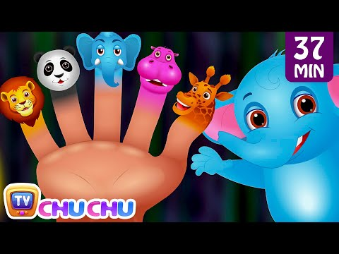 Video Finger Family Nursery Rhymes | Animal Finger Family Songs Collection | Learn Wild Animals | ChuChuTV download in MP3, 3GP, MP4, WEBM, AVI, FLV January 2017