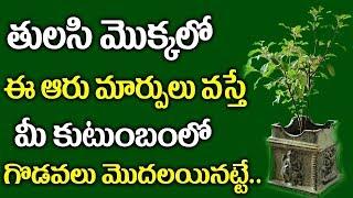 Video తులసి మొక్కలో ఈ ఆరు మార్పులు వస్తే మీ కుటుంబం తల్లకిందులు అవుతుంది ..!    Tulasi Tree Unknown Facts MP3, 3GP, MP4, WEBM, AVI, FLV April 2018