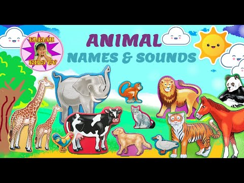 LEARN ANIMAL NAMES AND SOUNDS