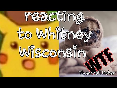 Video Reacting to Whitney Wisconsin (the dog f'er) GRAPHIC download in MP3, 3GP, MP4, WEBM, AVI, FLV January 2017
