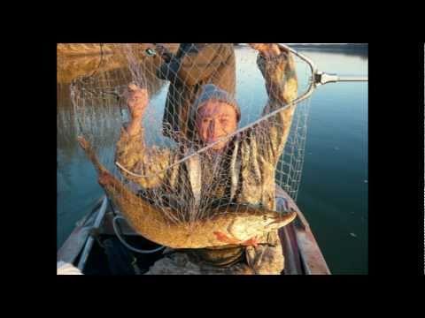 когда закрывается рыбалка в 2017 году в нижегородской области