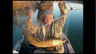Рыбалка на Оби. Сузунский район Новосибирская область.