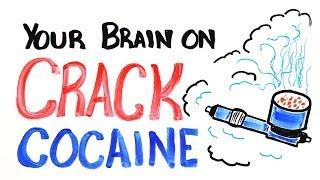 Your Brain on Crack Cocaine