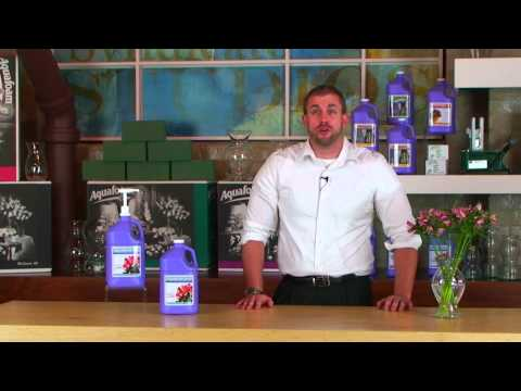 Step 3: How-To use AquaHold Products