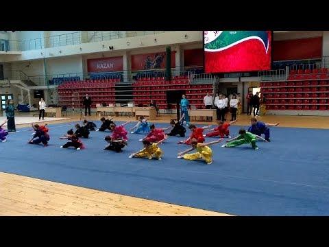 Чемпионат и Первенство Республики Татарстан 2018