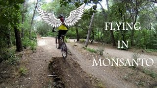 Flying @ Monsanto (31-07-2014)