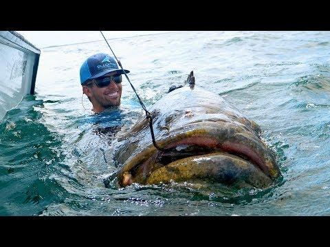 This Fish was Massive!! - Thời lượng: 14 phút.