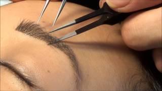 StudioLASH® Eyebrow Extensions & Eyebrow Henna - YouTube