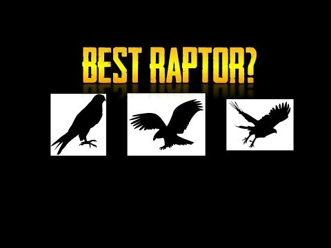 The Raptor Tier List