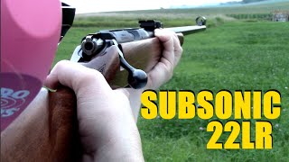Subsonic 22LR - Ruger 10/22 vs CZ 452
