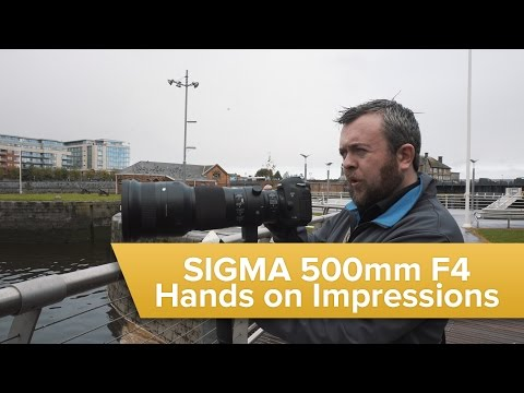 Sigma 500mm F4 DG OS HSM | S Hands on Impressions!