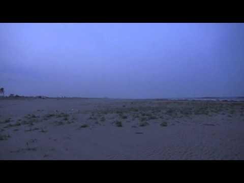 宮城県仙台市若林区荒浜 深沼海岸