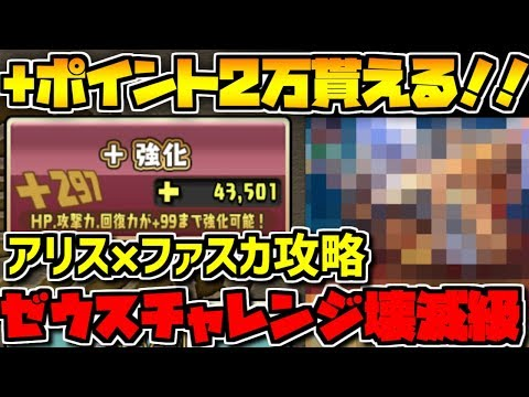 過去最高!+2万貰えるゼウスチャレンジ!アリス×ファスカで攻略解説!【 …