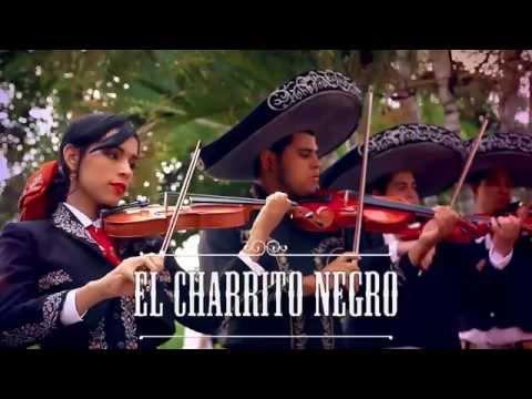 En Tu Cumpleaños - El Charrito Negro