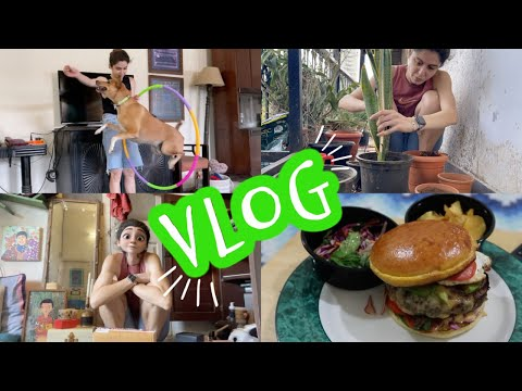 VLOG || Not Just A Day In My Life!