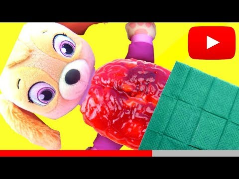Cutting Ope Paw Patrol SKYE Brain Belly- OPERATION to find toys INSIDE!
