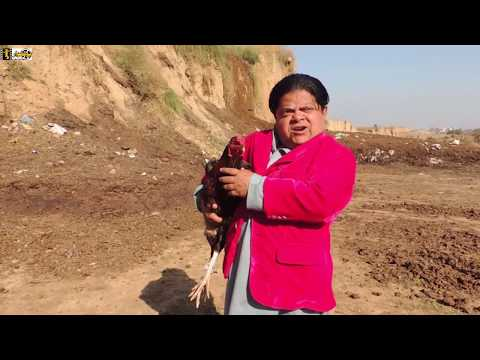 Rolla Murgay ka - shahzada Ghaffar funny clips - Pothwari Drama 2019 - Part 6