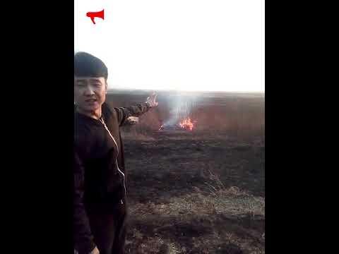 Житель Приморья застал китайца за поджиганием полей