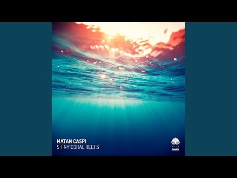 Shiny Coral Reefs (Alex Vidal Remix)