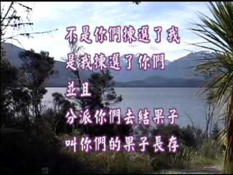 得救蒙恩的人(上)