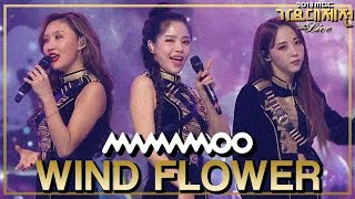 Download Video [HOT] MAMAMOO - Paint Me+Wind flower+Starry Night+Egotistic MP3 3GP MP4