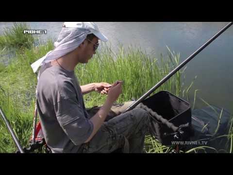 Риболовля за допомогою штекера на р. Горинь. Частина 2 [ВІДЕО]