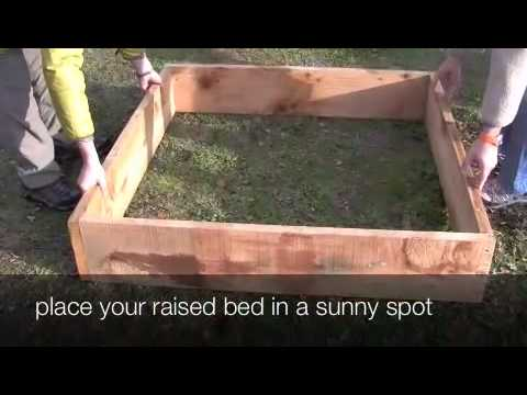 How to Build a Raised Vegetable Garden Bed
