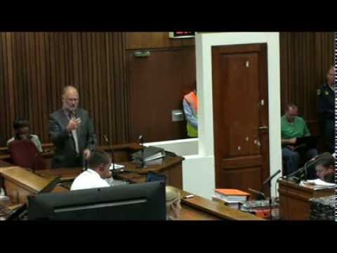 16 - Roger Dixon, the defence in the Pistorius murder trial's third witness, is testifying about the trajectory of the bullets that was fired from the athlete's p...