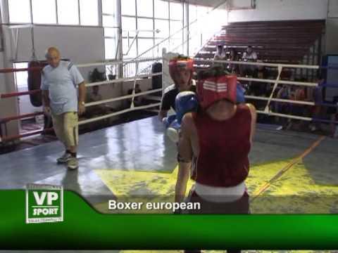 Boxer european