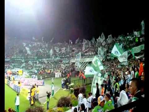 LOS DEL SUR CANTICOS (ATLETICO NACIONAL VS DEPORTES TOLIMA) - Los del Sur - Atlético Nacional - Colombia - América del Sur