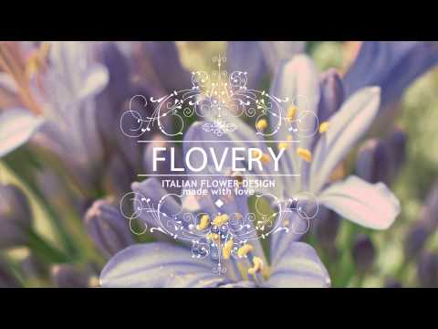 Flovery – video opener