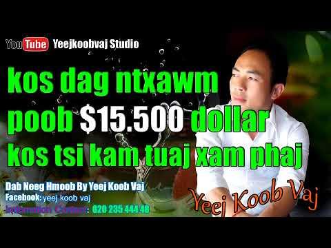 kos dag ntxawm poob nyiaj $15,500 dollar ko tsi kam xam phaj tuaj me kas 12 / 18 /2017 18 (видео)