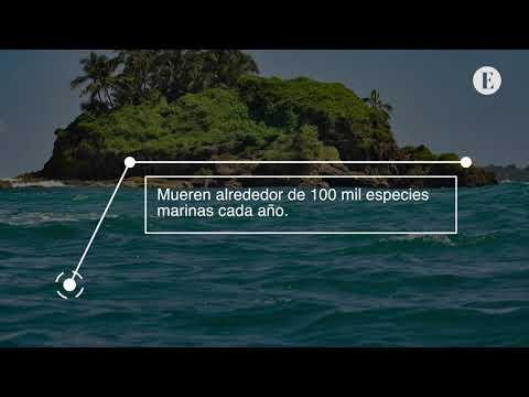 'Océanos sin Plástico, un Futuro Mejor