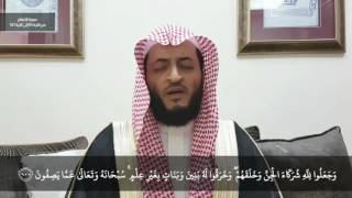 *New Recitation* Sheikh Hani Ar-Rifai~ Surah Anaam 95-107