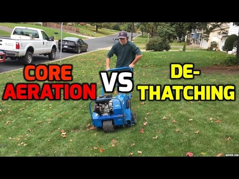 Yard Care Tips- Aeration & DeThaching for an Awesome DIY Lawn White Bear lake Mn