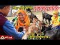 Download Lagu 194 Goat Farm, নারী উদ্দোক্তা সাবিনার ছাগলের খামার,গরুর খামার,খামার করতে চাইলে দেখুন এই ভিডিও। Mp3 Free