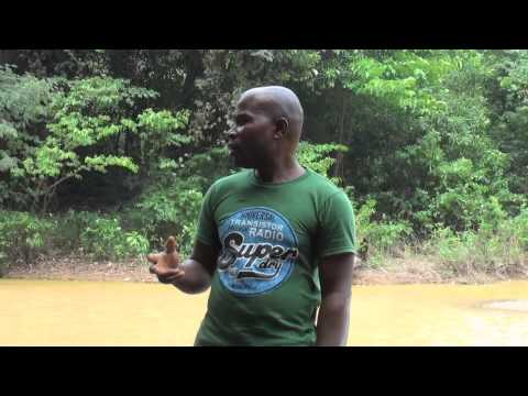 kwahu easter 2012 sex scandal - Welcome to Kwahu! We hope you enjoy our short, happy film. it tells you all about discovering unspoiled Kwahu in rural Ghana.....come and see what we have to...