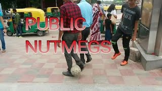 Panna India  city images : PUBLIC NUTMEGS (PANNA) IN INDIA