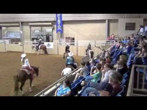 PtHA World Show 2012 World Champion Western Pleasure