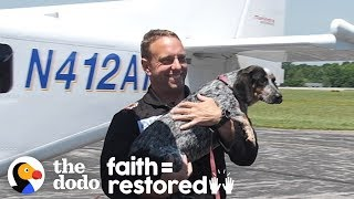 These Rescue Dogs Are About To Be Adopted By Veterans | The Dodo Faith = Restored by The Dodo