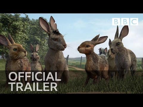 The Classic Richard Adams Book  Watership Down  Adapted as Animated Series for BBC One and